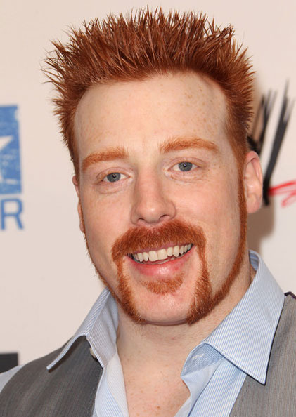 Sheamus Biography , Biodata and Wiki and Profile Details, Sheamus Height and Weight and Body Measurements, Sheamus Biceps Sizes, Sheamus  Date Of Birth, Age, Family, Wife, Affairs, Sheamus diet Education